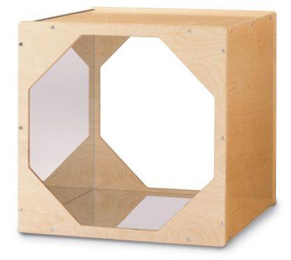 Reflecting Cube - Leren